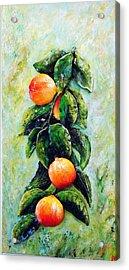 Peachy Day Acrylic Print