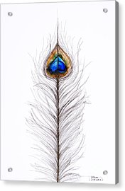 Peacock Abstract Acrylic Print
