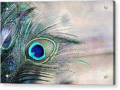 Peacock Eye Acrylic Print