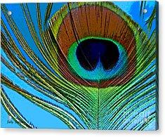 Peacock Feather 3 Acrylic Print