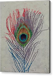 Peacock Feather Acrylic Print by Michael Creese