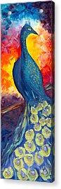 Peacock Acrylic Print by Jessilyn Park