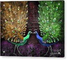 Peacock Magic Acrylic Print by Karen Sheltrown