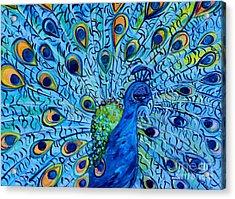 Peacock On Blue Acrylic Print by Eloise Schneider