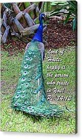 Peacock Psalms 84v13 Acrylic Print by Linda Phelps