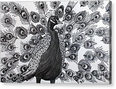 Acrylic Print featuring the drawing Peacock Walk by Megan Dirsa-DuBois