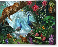 Peacocks And Leopards Acrylic Print by Steve Crisp