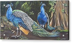 Peacocks In The Garden Acrylic Print by Phyllis Beiser