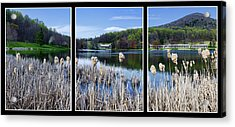 Peaks Of Otter Lodge Triptych Acrylic Print