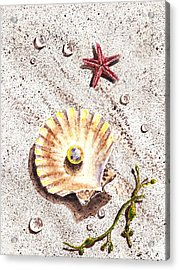 Pearl In The Seashell Sea Star And The Water Drops Acrylic Print by Irina Sztukowski