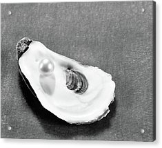 Pearl On Oyster Shell Acrylic Print