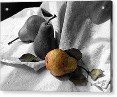 Pears - A Still Life Acrylic Print