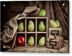 Pears On Display Still Life Acrylic Print by Tom Mc Nemar