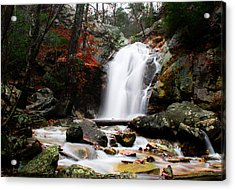 Peavine Falls In Autumn Acrylic Print by Shelby  Young