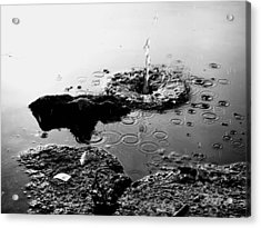 Pebble Splash Acrylic Print by David Stewart