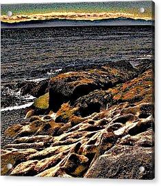 Pebble Worn Rock Acrylic Print