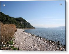 Acrylic Print featuring the photograph Pebbled Beach by Tracey Harrington-Simpson