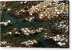 Pebbles Acrylic Print by Anastasiya Malakhova