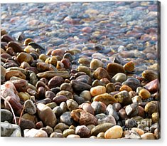 Pebbles On The Shore Acrylic Print by Leone Lund
