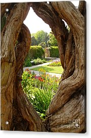 Acrylic Print featuring the photograph Peek At The Garden by Vicki Spindler