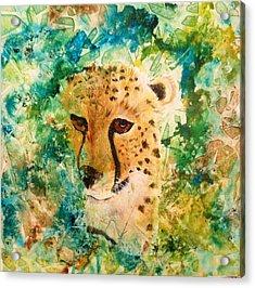 Peeking Beauty Acrylic Print