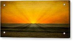 Peeking Over The Horizon Acrylic Print