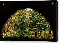 Peephole Acrylic Print by Kathi Isserman