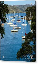 Peeping Through The Trees - Yachts Moored In A Quiet River Acrylic Print