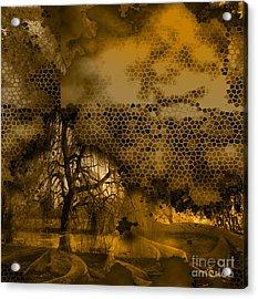 Peer Acrylic Print by Yanni Theodorou
