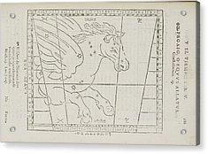Pegasus Star Constellation Acrylic Print by British Library