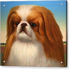 Pekingese Acrylic Print by James W Johnson