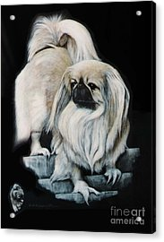 Acrylic Print featuring the painting Pekingnese by DiDi Higginbotham