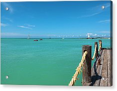 Pelican Pier And Ocean, Palm Beach Acrylic Print by Alberto Biscaro