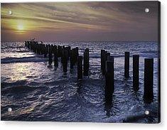 Pelican Pier Acrylic Print
