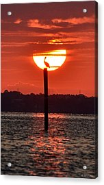 Pelican Silhouette Sunrise On Sound Acrylic Print by Jeff at JSJ Photography