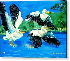 Pelican Trio Acrylic Print by Kathern Welsh