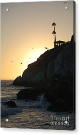 Pelicans Gliding At Sunset Acrylic Print