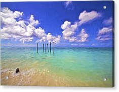 Pelicans Of Aruba Acrylic Print