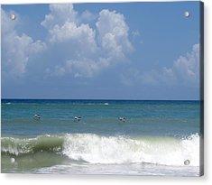 Pelicans Over The Ocean Acrylic Print