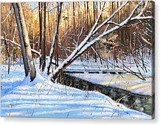 Peme Bon Won River Fly By Acrylic Print by Larry Seiler