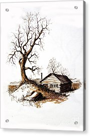 Acrylic Print featuring the drawing Pen And Ink 1 by Carol Hart