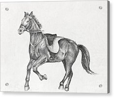 Pencil Drawing Of A Running Horse Acrylic Print by Kiril Stanchev
