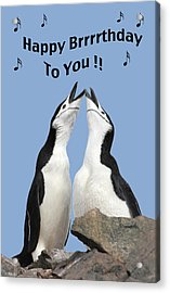 Penguin Birthday Card Acrylic Print
