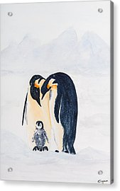 Penguin Family Acrylic Print by Elvira Ingram