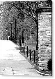 Penn State Campus  Acrylic Print