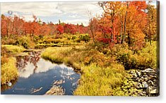Pennsylvania Autumn Pocono Mountain Stream Acrylic Print