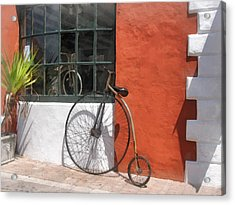 Penny-farthing In Front Of Bike Shop Acrylic Print by Susan Savad
