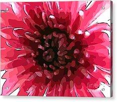 Peony Heart Acrylic Print