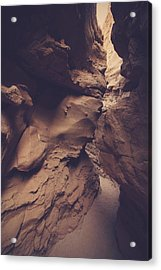 Perception Acrylic Print by Laurie Search