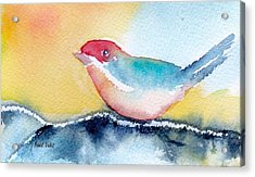 Acrylic Print featuring the painting Perching by Anne Duke